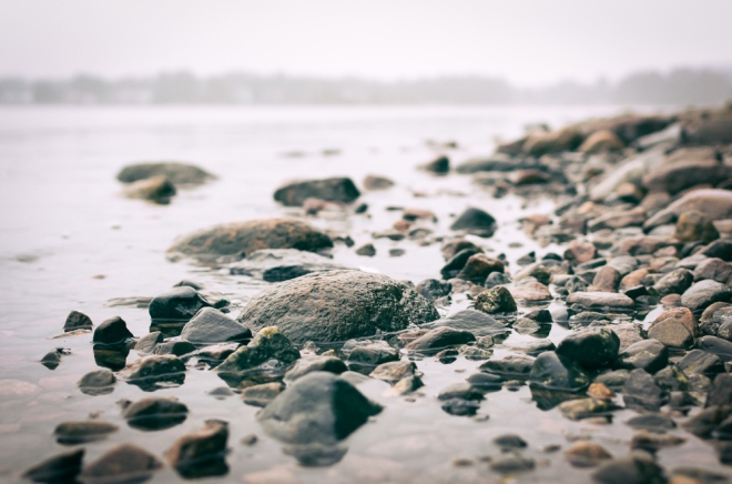 wet-rocks-seaside-1